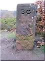 SJ2485 : A Birkenhead Glegg boundary stone on Thurstaston Common by John S Turner