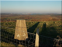 SY9482 : Corfe Castle: trig point on West Hill by Chris Downer
