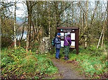 NO3653 : At RSPB Loch Of Kinnordy by Mary and Angus Hogg