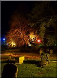 SP3509 : Illuminated tree in churchyard of St. Mary's, Church Green, Witney, Oxon by P L Chadwick