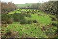 SX7950 : Rushy meadow, Washwalk by Derek Harper