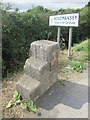 TA0636 : Mile  Stone  and  Mounting  Block  with  O/S Bench  Mark by Martin Dawes