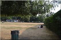 SU7682 : Mill Meadows by N Chadwick