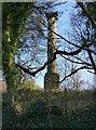 SK4351 : Jessop Monument, Codnor Park by Alan Murray-Rust