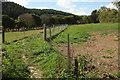 SX8074 : Fenced path to Old Liverton by Derek Harper