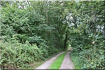 TQ0224 : Path off the A272, Strood Green by David Howard
