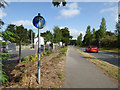 SX0552 : Shared use path alongside Cypress Avenue by Stephen Craven