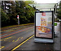 SS6699 : McDonald's advert on a Heol Maes Eglwys bus shelter, Morriston, Swansea by Jaggery