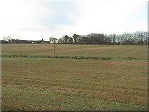 NS9947 : Stubble field at Carlindean by M J Richardson
