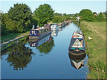 SK5023 : Moored narrowboats near Zouch in Nottinghamshire by Roger  Kidd