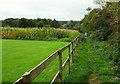 ST5860 : Footpath to Walley Lane by Derek Harper