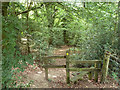 TQ4257 : Path into the woods by Robin Webster