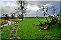 H5170 : Lisboy Townland by Kenneth  Allen