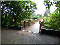 NS3421 : Footbridge over the River Ayr by Thomas Nugent