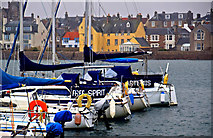 NT4999 : Elie Harbour, Fife by Jerzy Morkis