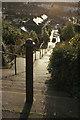 SX9165 : Post at top of steps, Daison by Derek Harper