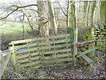 SE2342 : Stile below Green Gates Farm by Stephen Craven
