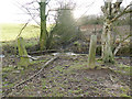 SE2242 : Pair of old stone gateposts by Stephen Craven