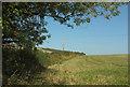 SX8458 : Field boundary by Lembury Road by Derek Harper