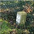 SE5324 : Milestone, Weeland Road, Kellingley by Alan Murray-Rust