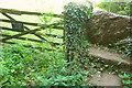 SX8457 : Forbidden stile near Stoke Gabriel by Derek Harper