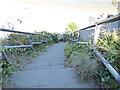 SX0141 : Steep steps to Little Perhaver Beach, Gorran Haven (1) by Stephen Craven
