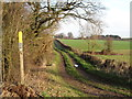 SE3835 : Track to Honesty Farm by Gordon Hatton