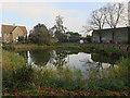 TL2985 : Pond in Ramsey by Hugh Venables