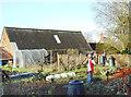 SP4537 : Scarecrow in the Vegetable Garden by Des Blenkinsopp