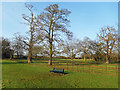 SP4538 : Bench in the Park, Bodicote by Des Blenkinsopp