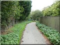 SX0150 : Path east of St Austell sewage works by David Smith