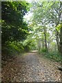 SX0047 : Heligan carriage drive (2) by David Smith