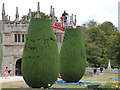 SX0863 : Topiary the safe way by Stephen Craven