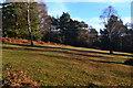 SU2411 : Grassy slope in Ocknell Inclosure by David Martin