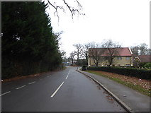 TQ0165 : Looking north-west along Lyne Lane by Basher Eyre