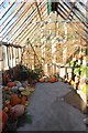 SE2754 : Greenhouse of vegetables by DS Pugh