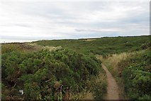NJ1570 : Coast path east of Hopeman by Richard Webb