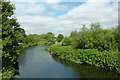 SK0319 : The River Trent north of Rugeley in Staffordshire by Roger  Kidd