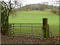 SJ9460 : Gate into a field below Oldhill by Stephen Craven