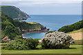 SS6949 : Front lawn, Lee Abbey by Ian Capper