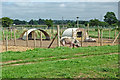 SK0220 : Pig enclosures near Bishton in Staffordshire by Roger  Kidd