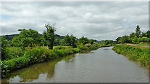 SK0220 : Trent and Mersey Canal east of Bishton in Staffordshire by Roger  Kidd