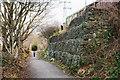 NZ2061 : Woodhouses Lane descending by Trevor Littlewood
