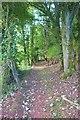SX6739 : SW Coast Path on Bolt Tail, South Devon by Derek Voller