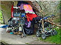 SJ9422 : Living rough by the canal near Stafford by Roger  Kidd