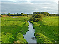 SJ9321 : Evening grazing by the River Penk near Stafford by Roger  Kidd