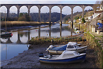 SX4368 : River Tamar, Calstock by Stephen McKay