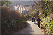 SX4368 : Walking down from Calstock Station by Stephen McKay