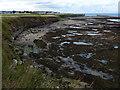 NU2231 : Braidcarr Rocks along the Seahouses coastline by Mat Fascione