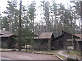 NY5727 : Badger Wood, Whinfell by M J Richardson